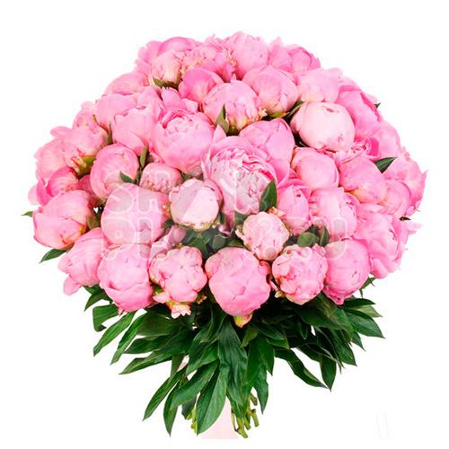 Букет нежно-розовых пионовидных роз